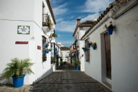 The-Trip_2014_The-streets-of-Estepona-Spain.jpg